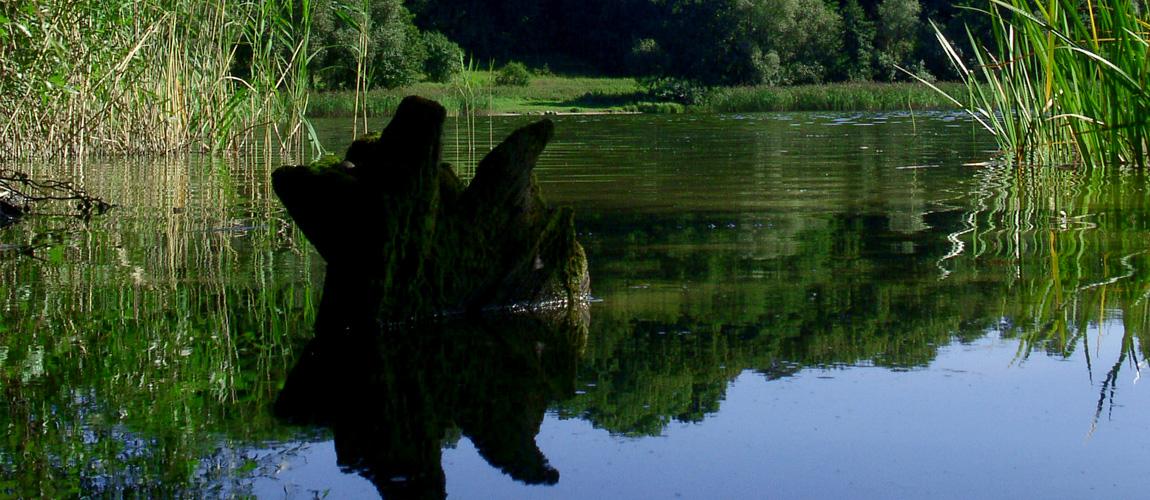 jezioro01